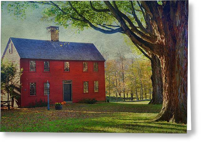 The Red House Greeting Card by Barbara Manis