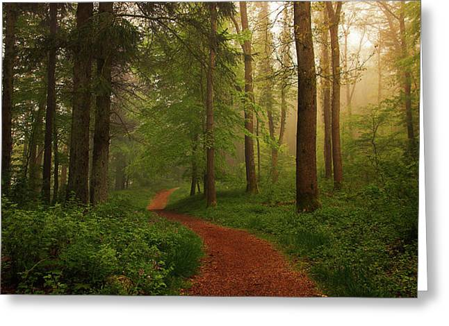 The Red Path. Greeting Card