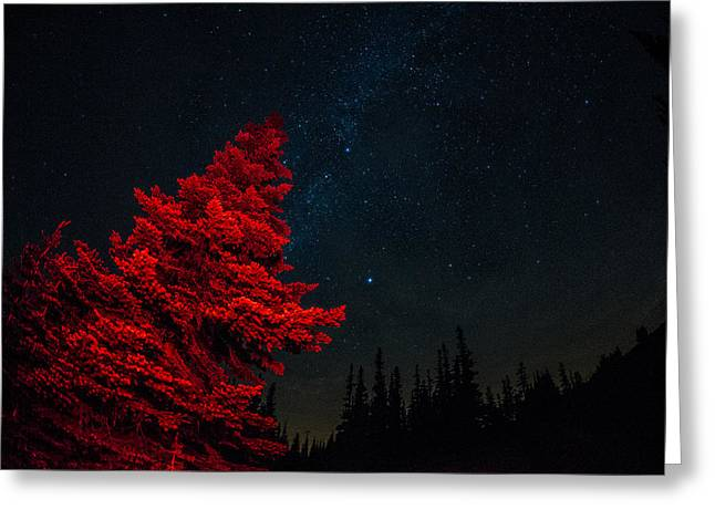 The Red Tree On A Starry Night Greeting Card by Brian Xavier