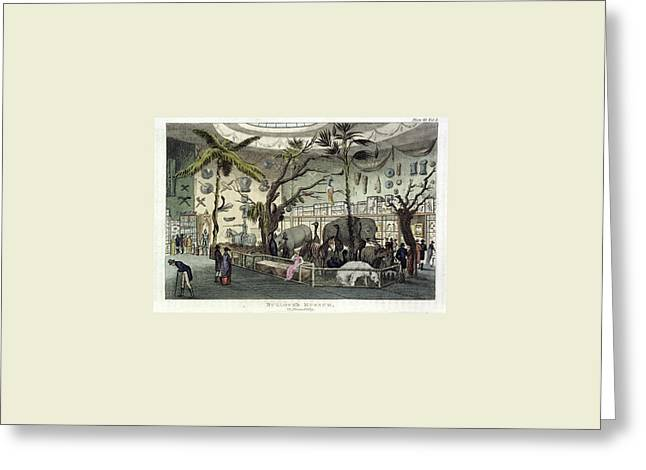 The Repository Of Arts, Literature, Commerce Greeting Card by Litz Collection