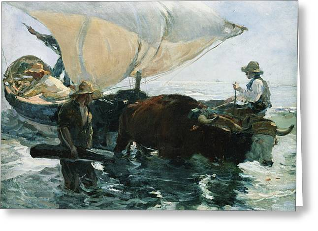 The Return From Fishing Greeting Card by Joaquin Sorolla y Bastida
