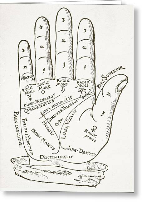 Antique Palmistry Diagram  The Right Hand Greeting Card by German School