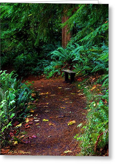 The Right Path Greeting Card by Jeanette C Landstrom