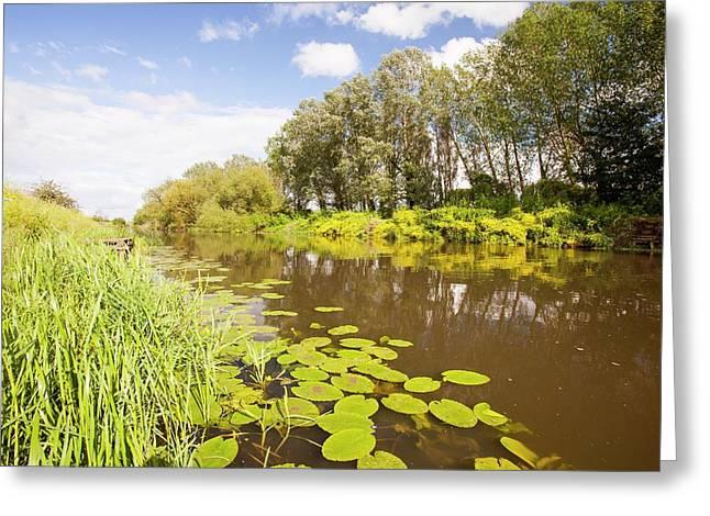 The River Avon At Pershore Greeting Card