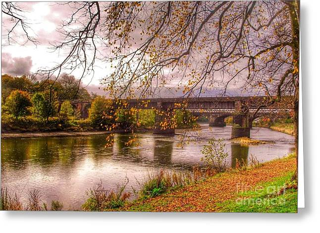 The Riverside At Avenham Park Greeting Card