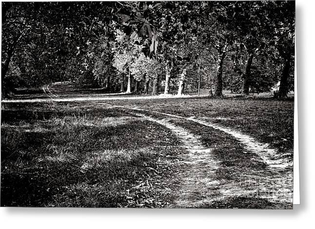 The Road Less Than Way Much Less Traveled  Greeting Card by Olivier Le Queinec