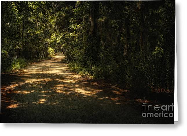 The Road Less Traveled Greeting Card by Tamyra Ayles