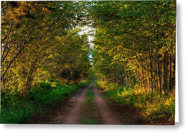 The Road Less Travelled Greeting Card by Matt Dobson