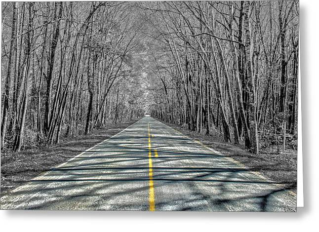 The Road Greeting Card by Steven  Taylor