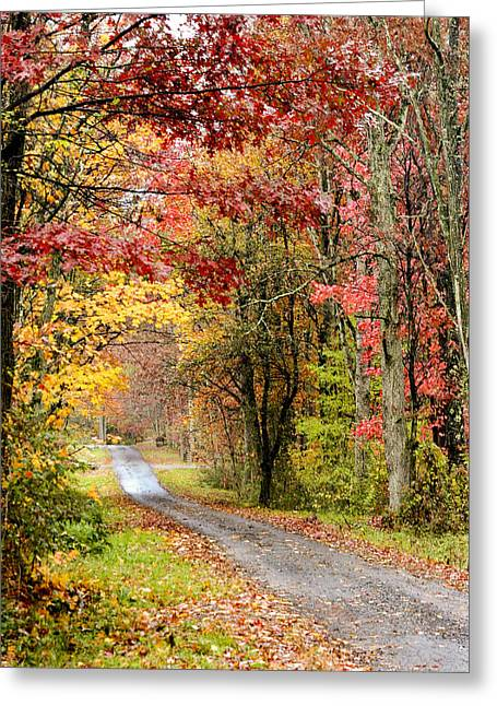 The Road Through Fall Greeting Card