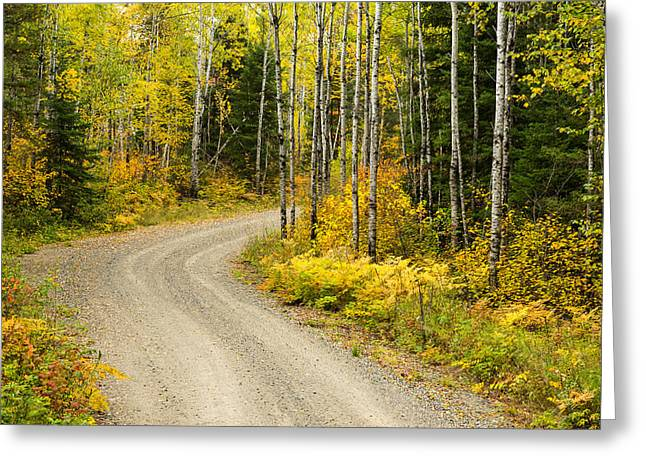 The Road To Bob Bay Greeting Card by Adam Pender