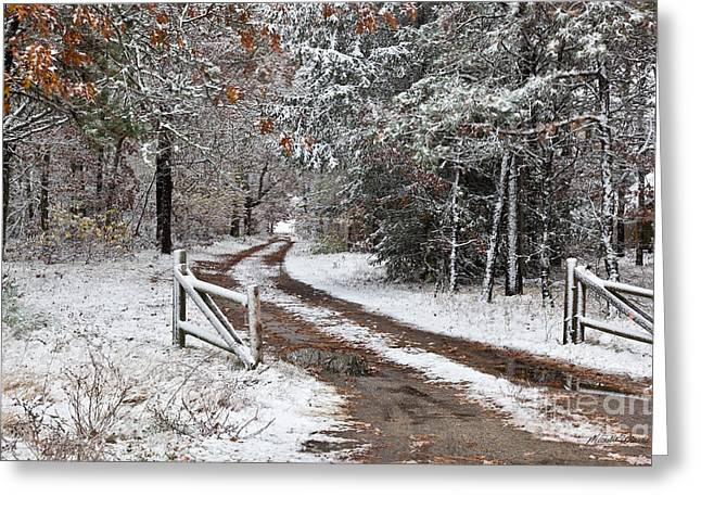 The Road To The River Greeting Card by Michelle Wiarda