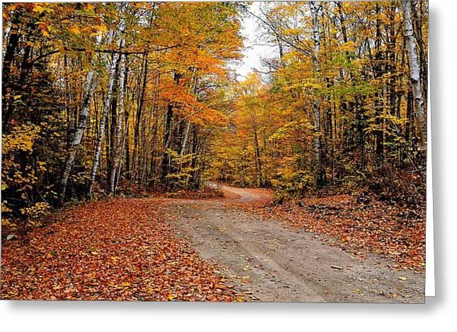 The Road We Take Greeting Card