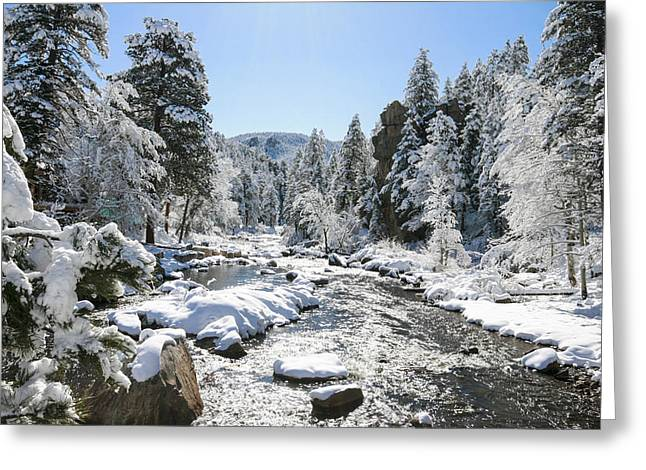 The Rockies In Winter Greeting Card by Jill Bell