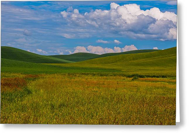 The Rolling Hills Of The Palouse Greeting Card by David Patterson