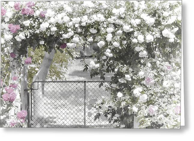 The Rose Arbor Greeting Card by Elaine Teague