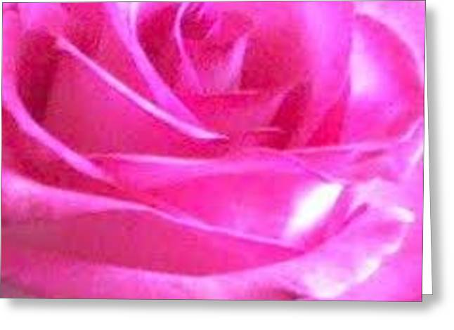 The Rose Greeting Card by Gayle Price Thomas