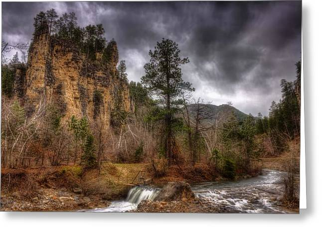 The Run Off Greeting Card by Michele Richter