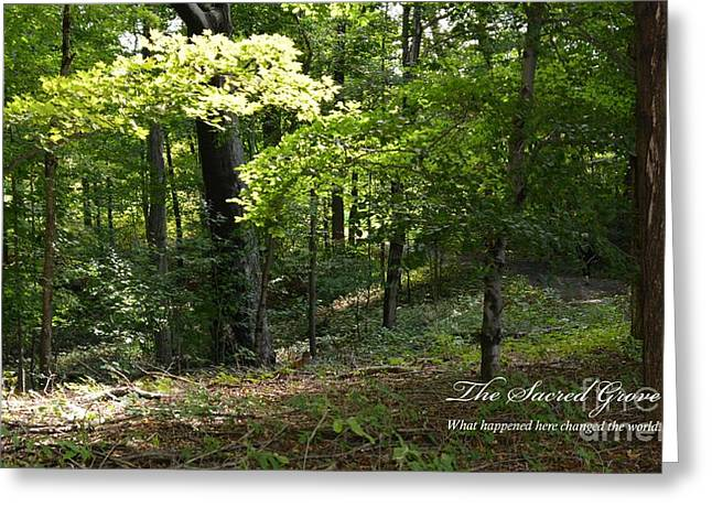 The Sacred Grove Greeting Card by Nedra Bell