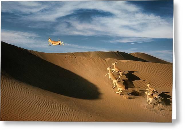 The Sand Gazelle. Greeting Card