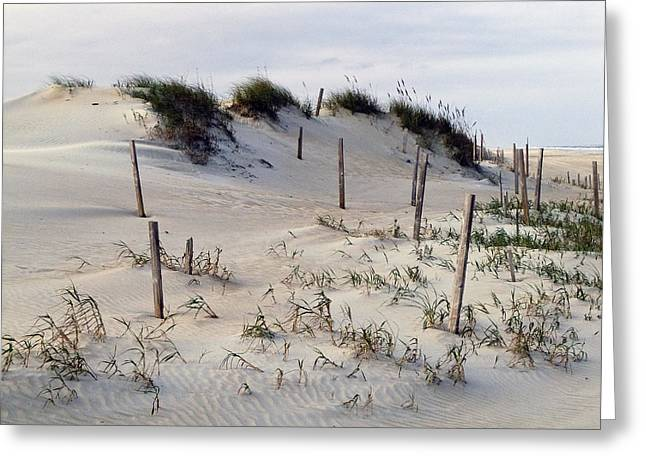 The Sands Of Obx Greeting Card by Greg Reed