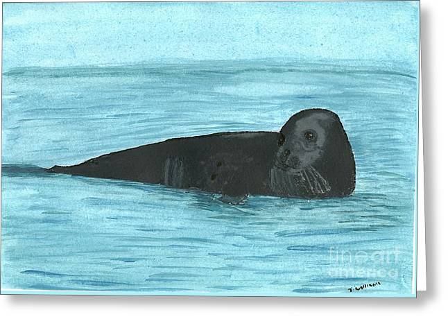 The Seal Greeting Card