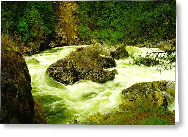 The Selway River Greeting Card by Jeff Swan