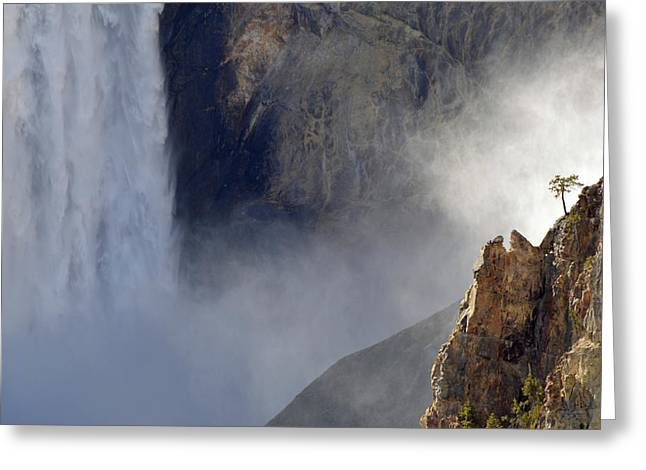 The Sentinel Of The Lower Falls Greeting Card by Bruce Gourley