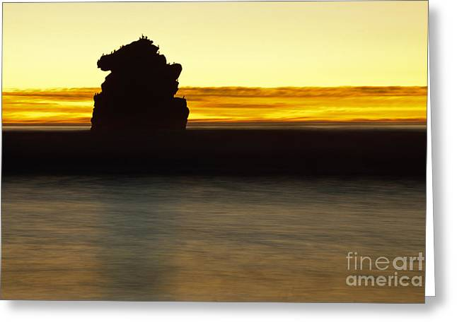 Greeting Card featuring the photograph The Sentinel by Terry Garvin