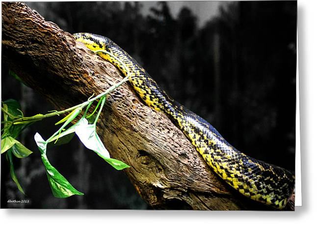 The Serpent Greeting Card by Dick Botkin