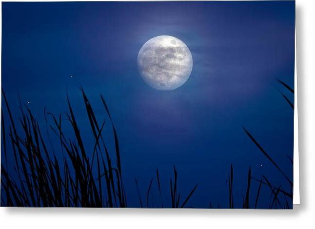 The Seventh Moon Greeting Card