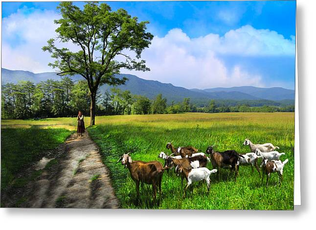 The Shepherdess Greeting Card by Debra and Dave Vanderlaan