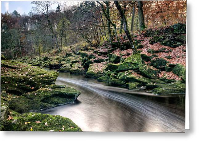 The Shimmering Strid Greeting Card by Chris Frost