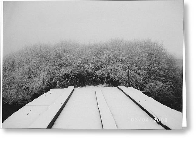 The Silence Of Winter Greeting Card by James Rishel