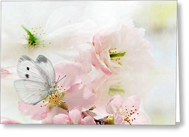 The Silent World Of A Butterfly Greeting Card