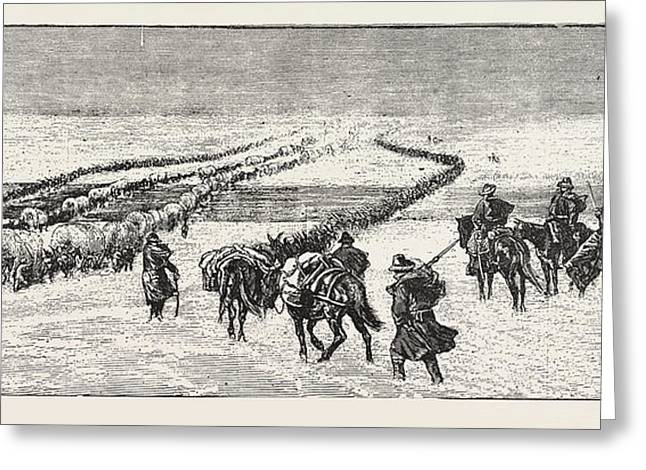 The Sioux War The Powder River Expedition Crossing Greeting Card