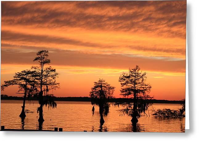 The Sky At Sunset Greeting Card by Carolyn Ricks