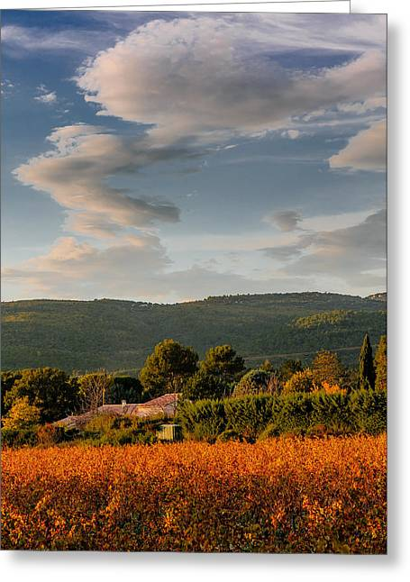 The Sky Over The Wineyard Greeting Card by Alain De Maximy