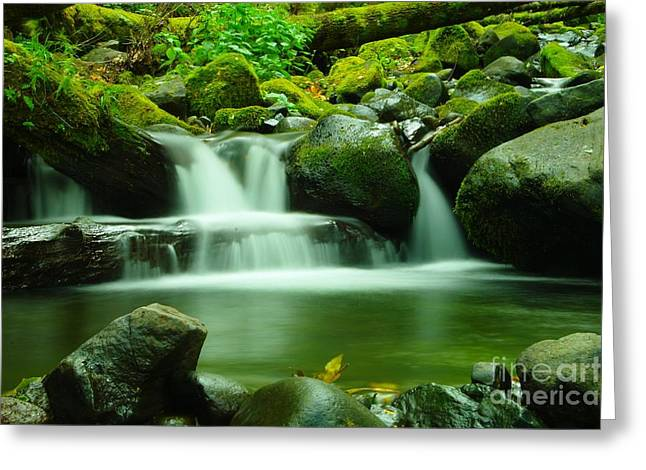 The Small Water Greeting Card by Jeff Swan