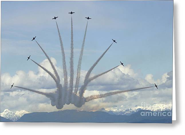The Snowbirds In High Gear Greeting Card by Bob Christopher