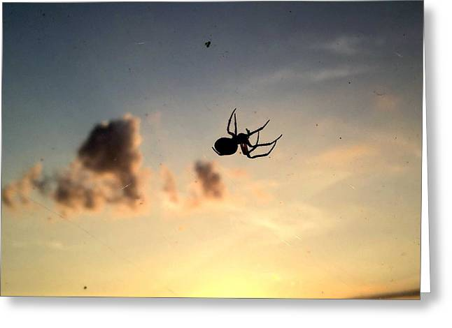 The Spider And The Fly Greeting Card by Luther Fine Art