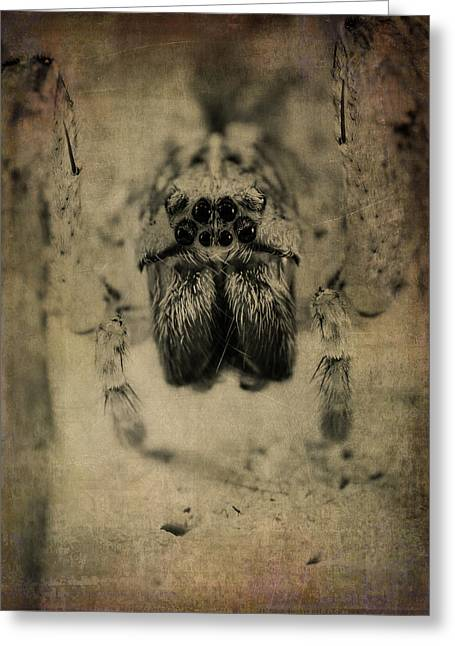 The Spider Series Xiii Greeting Card by Marco Oliveira