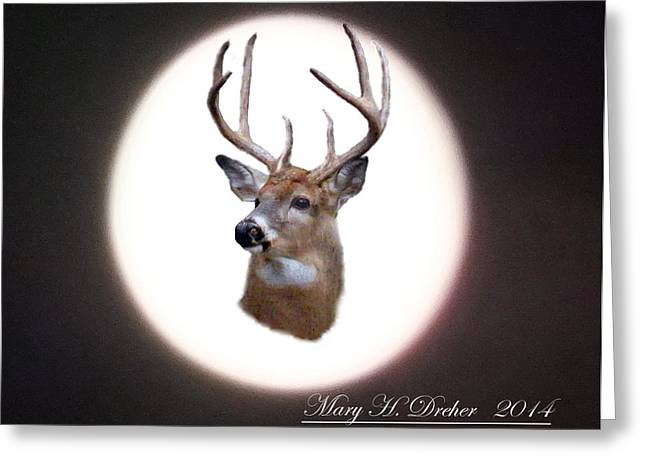 The Spirit Of Goldie Greeting Card by Mary Dreher