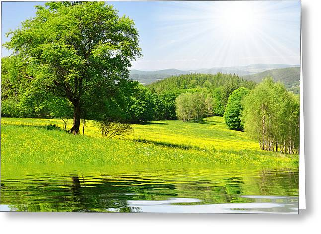 The Spring Landscape Greeting Card by Boon Mee