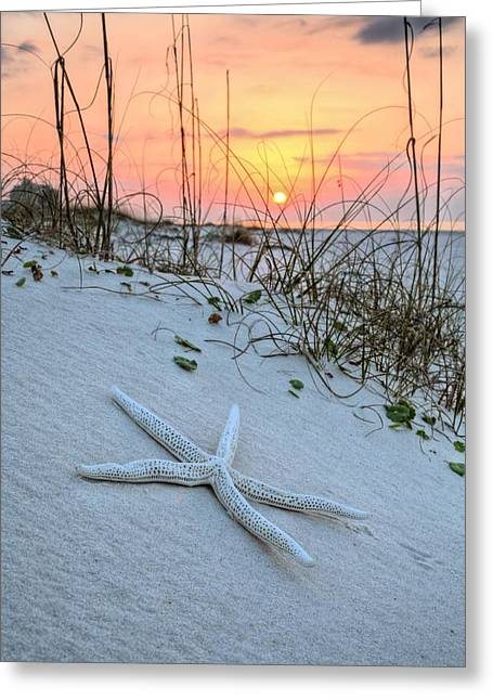 The Starfish On Orange Beach Greeting Card by JC Findley