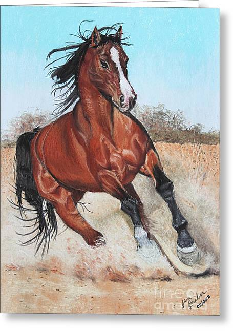 The Steed Greeting Card