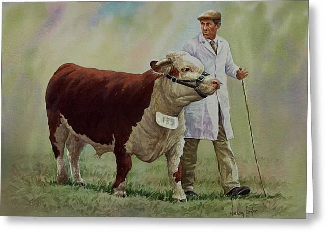 The Stockman And Bull Greeting Card by Anthony Forster