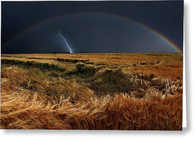 The Storm Is Over Greeting Card