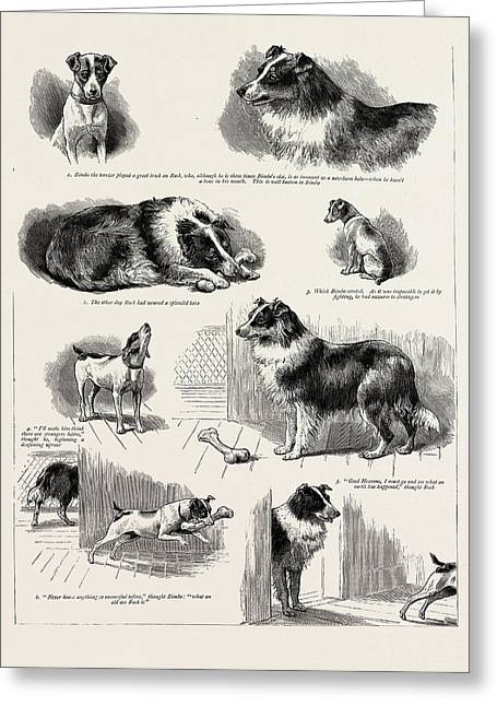 The Story Of A Clever Terriers Stratagem Greeting Card by Litz Collection