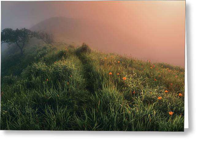 The Story Of The Foggy Morning Greeting Card